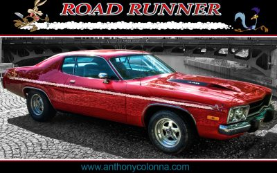 Road Runner Vehicle Wrap Striping by Anthony Colonna